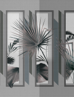 Front View_design Bruno Tarsia_cover