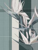 Strelitzia_design Bruno Tarsia_cover